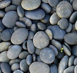 Flat Rocks